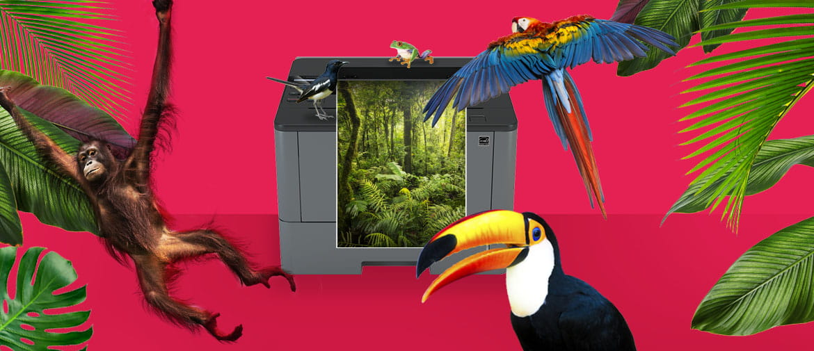 A Brother printer printing a rainforest scene against a colourful pink background of exotic animals, birds, plants and trees to signify our environmental commitment