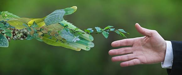 Grüne Hand aus Blättern und menschliche Hand greifen nacheinander.