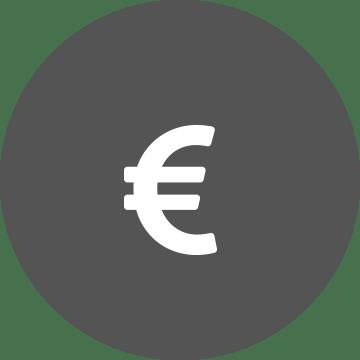 White euro symbol on a grey circle background