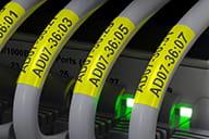 Brother TZe-SL651 schwarz auf gelben selbstlaminierenden Etiketten zur Kennzeichnung von Netzwerkkabeln