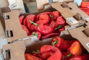 Soluciones de etiquetado Brother para el Sector hortofrutícola