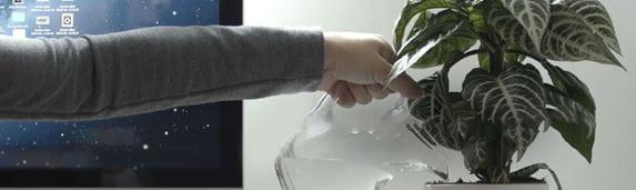 Osoba podlewa roślinę