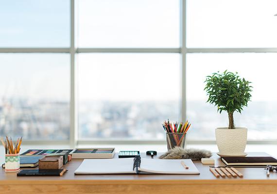 slika lepo pospravljene delovne mize z odprtim prenosnikom, okno, bonsai