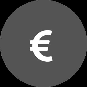 Icona simbolo euro su sfondo grigio