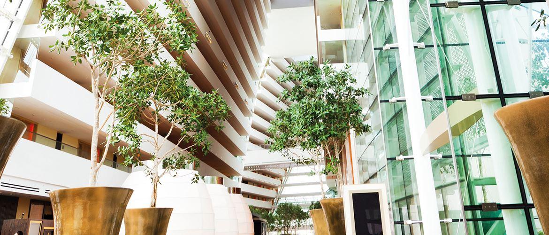 Et moderne kontorbygg med grønne planter