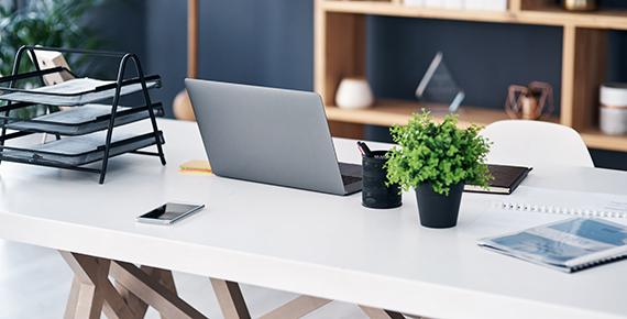 Työpöytä, läppäri, lokerikko ja kasvi