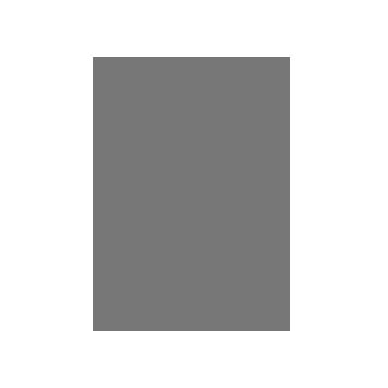 Grey ID card icon