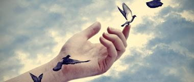 Hand releasing pigeons into the air