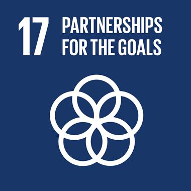 SDG-partnerships-for-goals