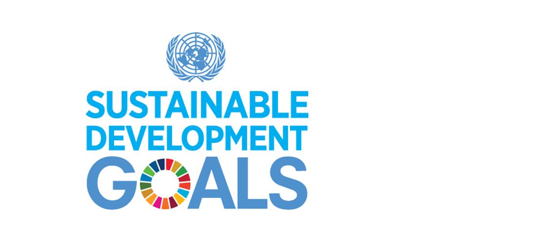 SDG-promo-block