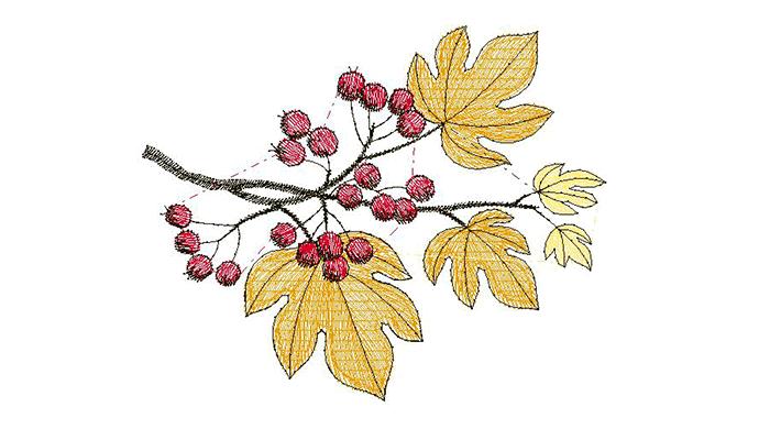 Borduurpatroon herfstbladeren
