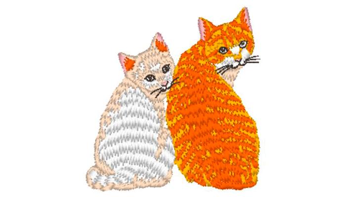 Ricamo di zenzero e gatto bianco