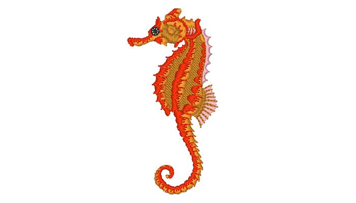 Motif de broderie hippocampe orange