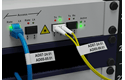 PT-E550WNIVP címkenyomtató készlet hálózati infrastruktúra kiépítéséhez 7