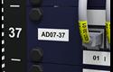 PT-E550WNIVP - network infrastructure label printer kit 9