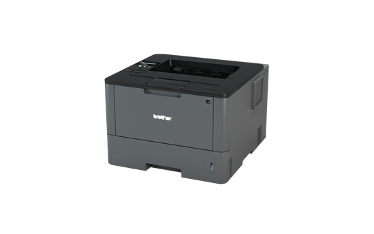 Лазерный принтер HL-L5100DN 2
