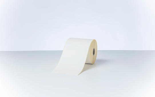 Direct Thermal Continuous Label Roll BDE-1J000102-102 (Box of 8) 4