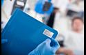 BDE-1J026051-102 - direkte termisk labelrulle med udstansede labels 5