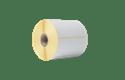 Tiešās termodrukas tehnoloģijas sagrieztas uzlīmes rullī BDE-1J050102-102 3