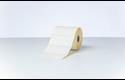 BDE-1J050102-102 - direkte termisk labelrulle med udstansede labels 4