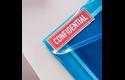 Rouleau continu d'étiquettes pleine couleur Brother CZ-1005 d'origine, 50 mm de large 6