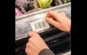 BDE-1J044076-040 - Rouleau d'étiquettes prédécoupées pour imprimante thermique mobile 3 pouces 5