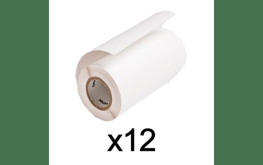 RD-M03E1 12 x Label Rolls