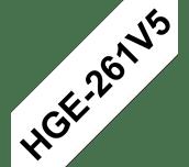 HGE261V5 Cinta HGe de alta resolución de impresión