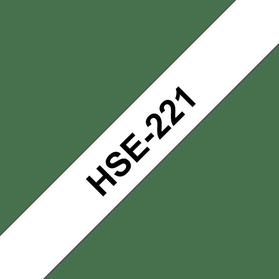 HSE221_main