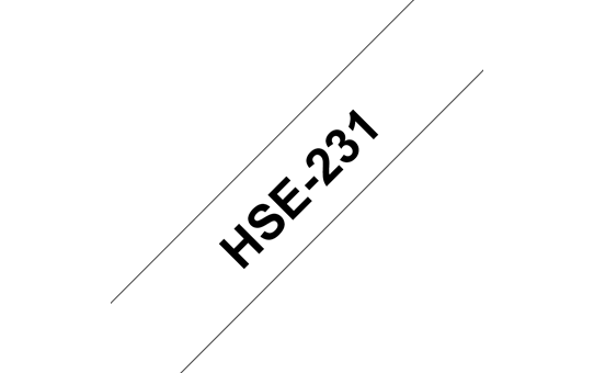 HSe231