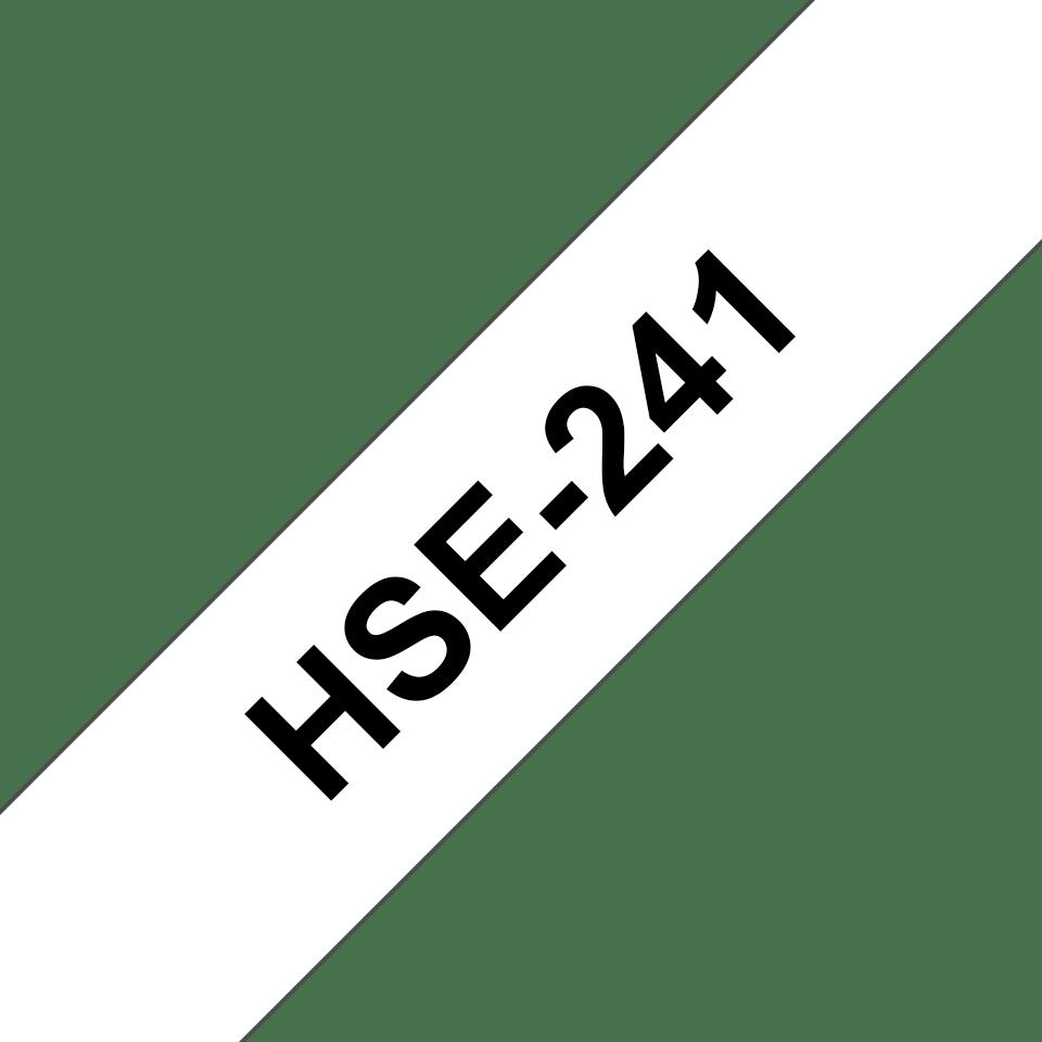 HSE241_main