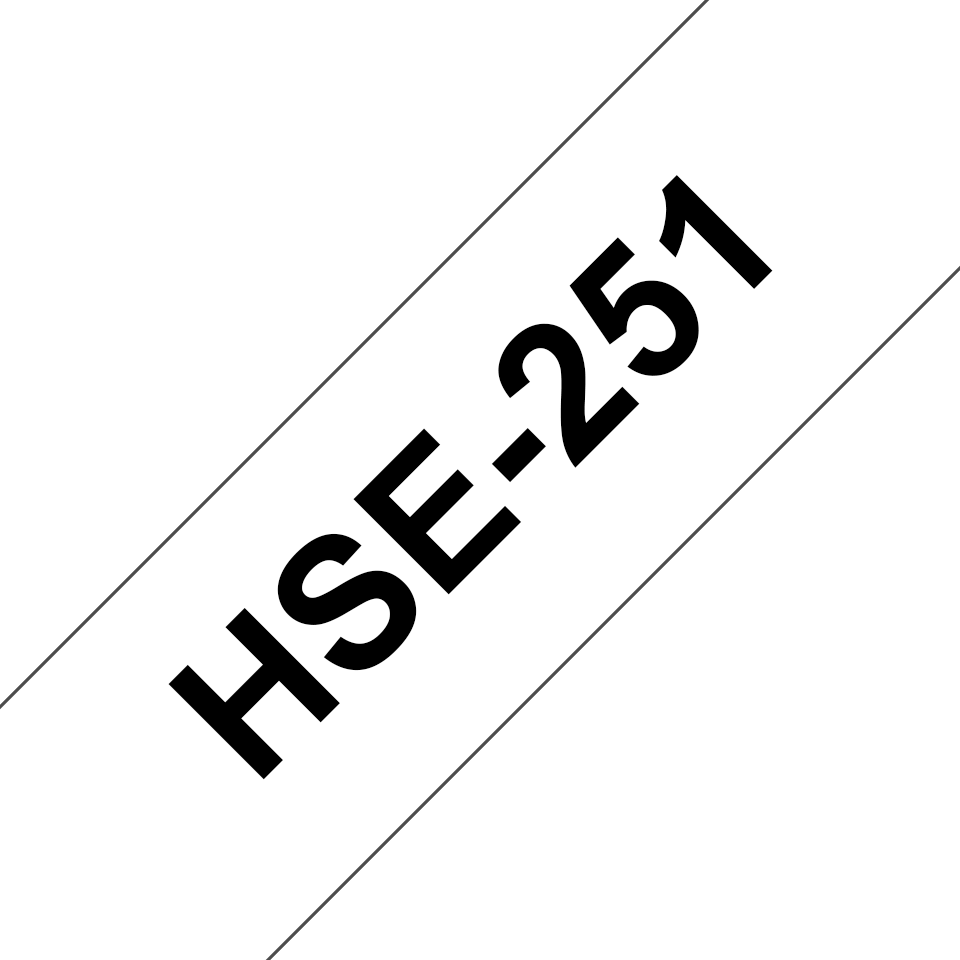 HSE251