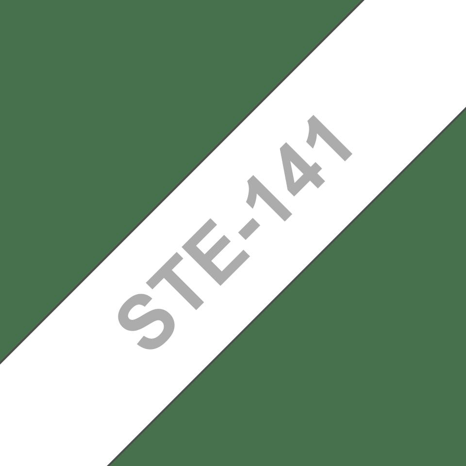 STE141_main