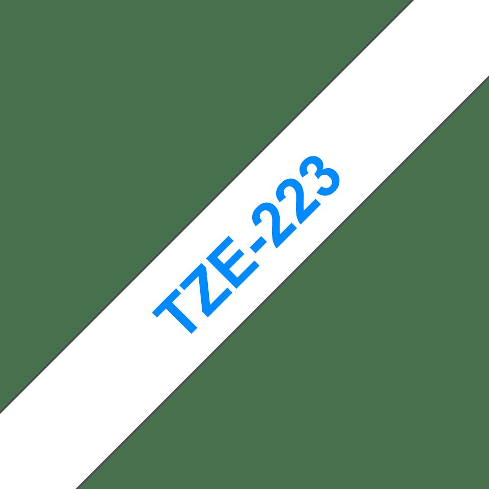 TZe223