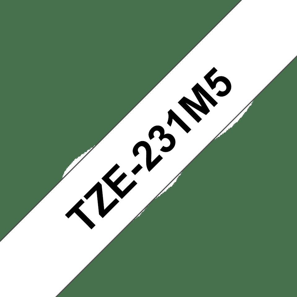 TZe231M5_main