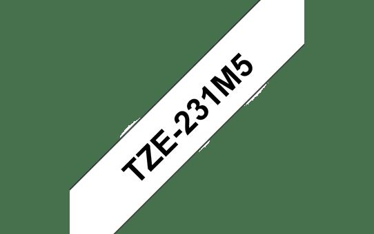 TZe231M5 3
