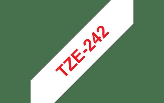 TZe-242 ruban d'étiquettes 18mm