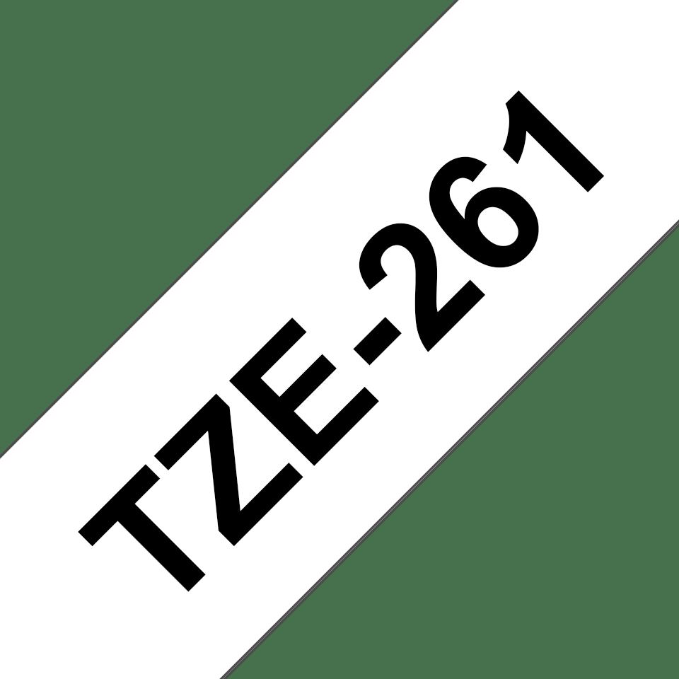 TZe261