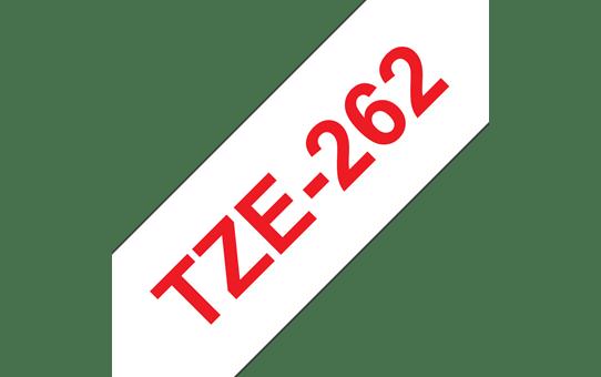 TZe262 4