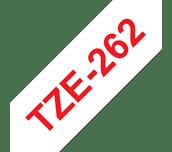TZe262
