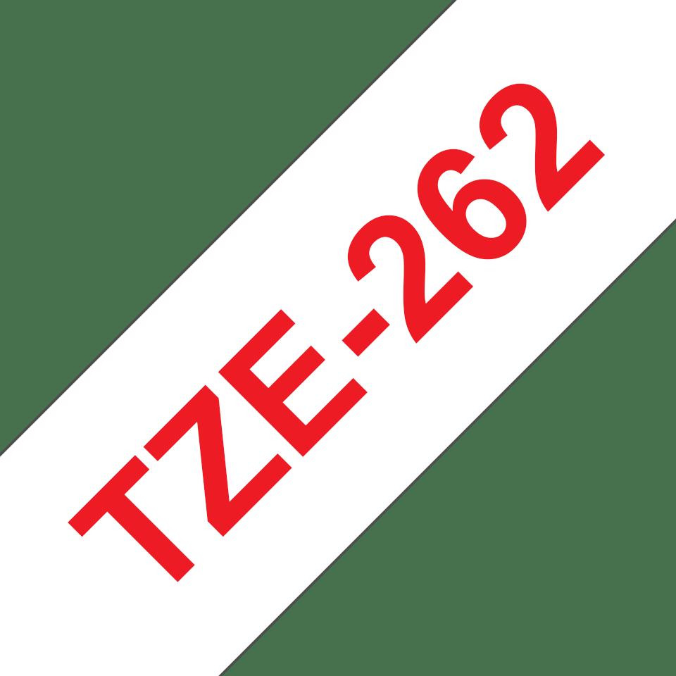 TZe262_main