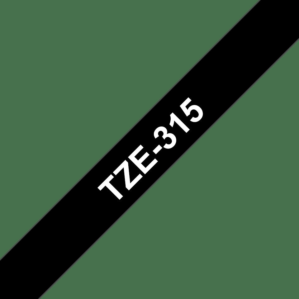 TZe315_main