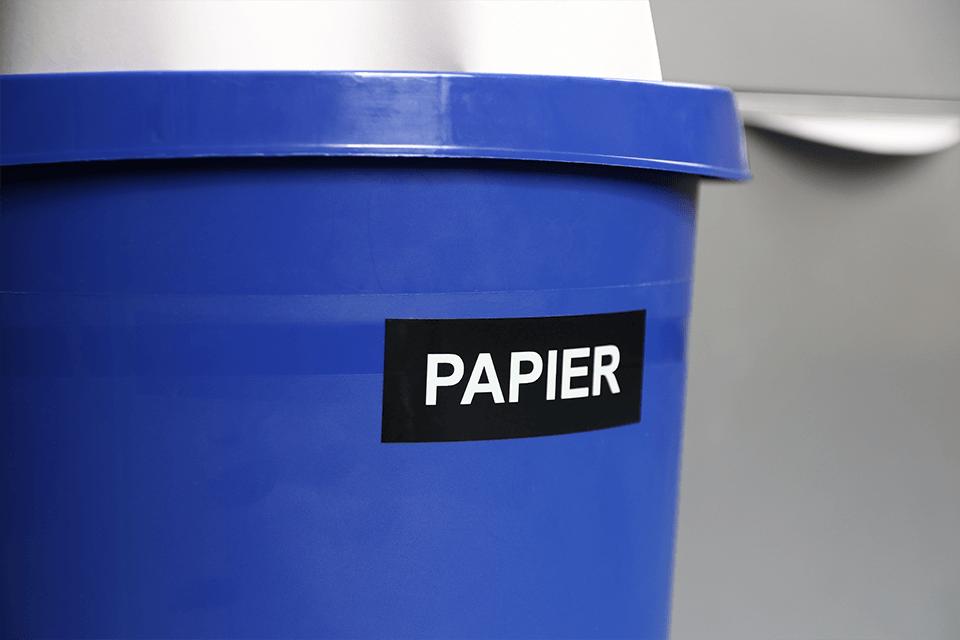 Cinta laminada TZe365 Brother identificando cubo de papel