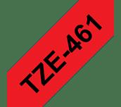 TZe461_main