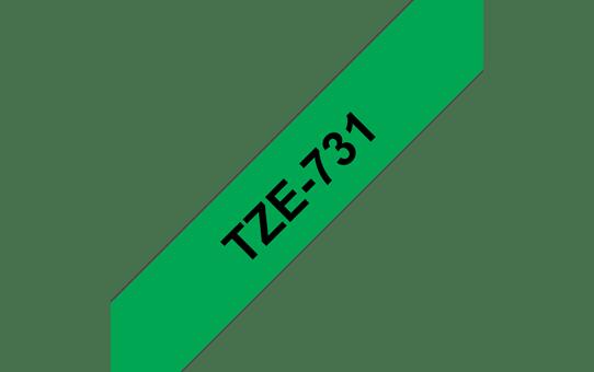 TZe731 4