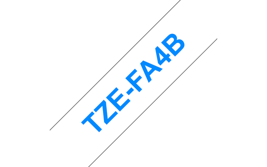 TZe-FA4B 2