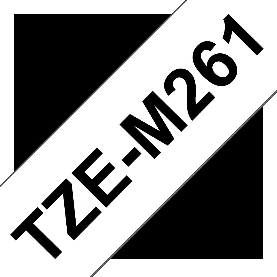 TZeM261_main