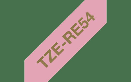 TZe-RE54 ruban tissu 24mm