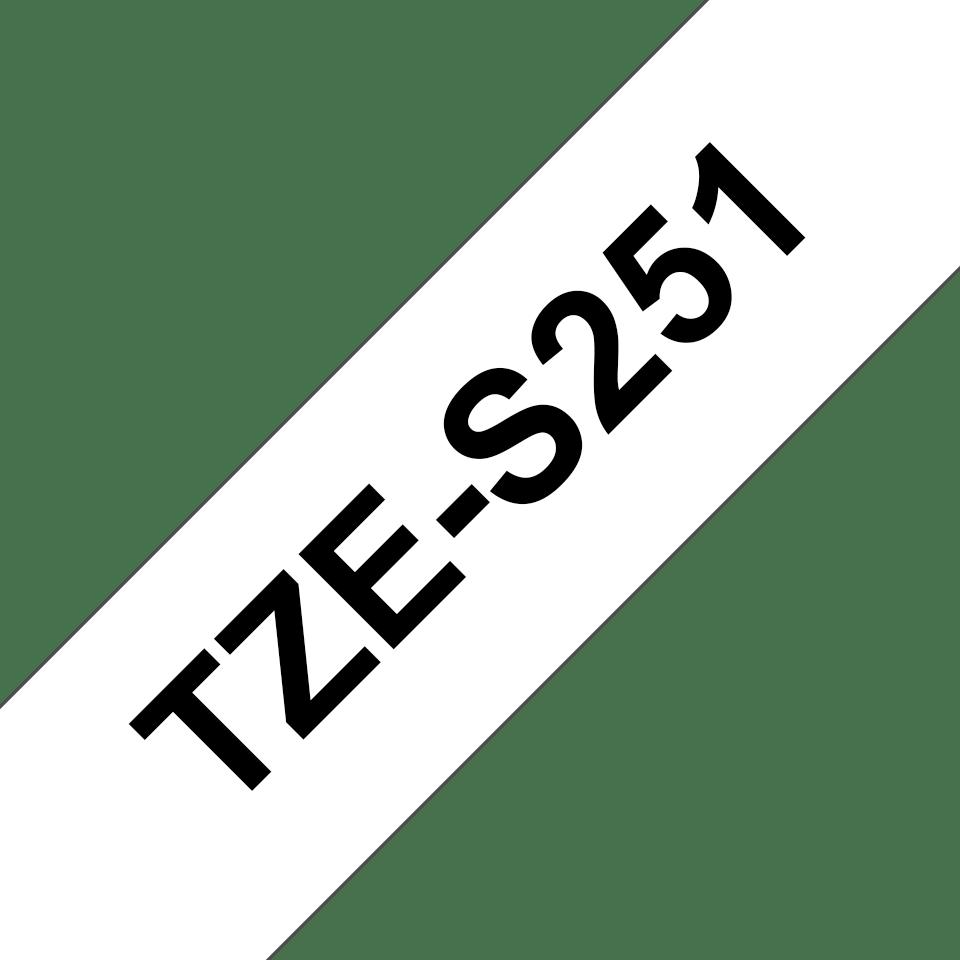 TZeS251_main