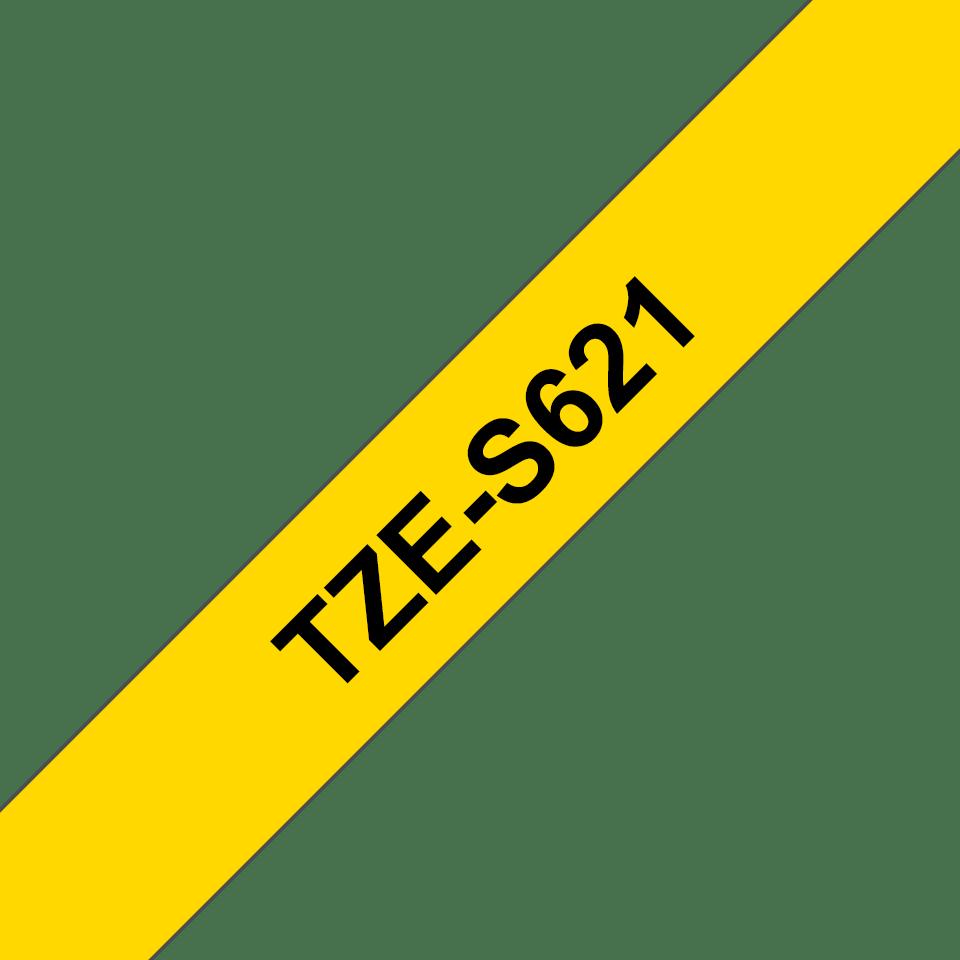 TZeS621_main